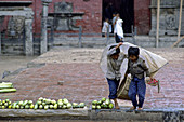 Young boys selling vegetables under moonson rain, Bhaktapur, Kathmandu valley, Nepal