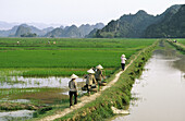 Farmers back from the fields along a canal, Ninh Binh province, Vietnam