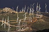Wind power plant, Tarifa, Spain