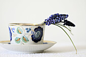 Couple stems of grape hyacinth curve over the rim of a white procelain cup with blue floral motif and gold rim
