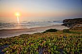 Praia de Monte Clérigo, Aljezur, Parque Natural do SW Alentejano e Costa Vicentina, Algarve, Portugal