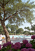 Swimming pool in a holiday resort, Moliets, Aquitaine, France