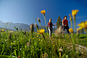 A couple nordic walking under blue sky, Tyrol, Austria, Europe
