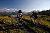 Paar beim Mountainbiken am Blaser, Mountainbike Tour nahe Steinach am Brenner, Wipptal, Tirol, Österreich