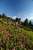 Zwei Mountainbiker am Grenzkamm, Mountainbike Tour, Wipptal, Brenner, Tirol, Österreich