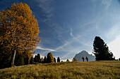 Couple hiking near Wolkenstein mountain, Gardena Valley, Langkofel, South Tyrol, Italy, Europe