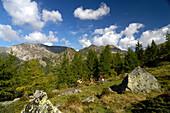 Mountain bike tour in Nockberge mountains, near Bad Kleinkirchheim, Carinthia, Austria, Europe