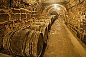 Miranda winery cellar,  Briones. La Rioja,  Spain