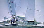 Active, Color, Colour, Contemporary, Lasers, People, Racing, Recreation, Sailboat, Sailboats, Sailing, Sports, A06-714475, agefotostock