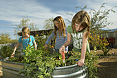 Civano Community School in Tucson,  Arizona,  USA,  won first place in a national contest as the Greenest School in America The school teaches and practices environment friendly policies