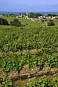 France. Gironde. Sainte Croix du Mont surrounded by vine fields,  in the D.O. Saint Croix du Mont Bordeaux wine district.