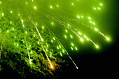 Burst, Bursting, Bursts, Celebrate, Celebrating, Celebration, Celebrations, Color, Colour, Concept, Concepts, Exploding, exterior, Festival, Festivals, Fireworks, Green, Holiday, Holidays, Lights, Night, Nighttime, Noise, outdoor, outdoors, outside, Pyrot