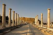 Palladius street byzantine colonnade ruins tel beit shean national park. Israel.