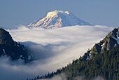 Mt Adams from Sunrise Point, Mt Rainier National Park, Washington, USA