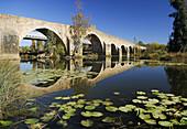 Puente sobre el río Gévora. S. XVI. Badajoz. Extremadura.España