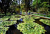 Majorelle Gardens, Marrakesh, Morocco