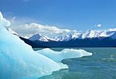 Glacial Ice Field, Moreno Glacier (Calafate), Argentina