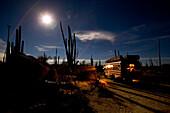 Ein Amerikanischer Schulbus steht nachts in einer Kakteenwüste geparkt, Vollmond, Sternenhimmel, Catavina, Baja California Nord, Mexiko