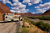 Ein 18 Jähriger Junge steht auf einem Amerikanischen Schulbus und blickt den Colorado River herunter bis zu den Fischer Towers, Utah Scenic Highway 128, Moab, Utah, USA