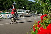 Female cyclist riding along Danube river, Danube Cycle Route Passau to Vienna, Passau, Lower Bavaria, Bavaria, Germany