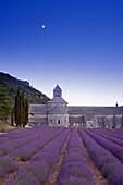 Mond über der Klosterkirche Abbaye de Senanque im Lavendelfeld, Vaucluse, Provence, Frankreich, Europa
