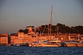 Harbour scene, luxury cruisers in quai Jean-Jaures in warm sunlight, St Tropez, Cote d'Azur, France