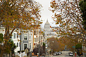 City Hall from Alamo Square in Pacific Heights in autumn, San Francisco, California, USA