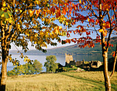 Loch Ness and Castle Urquhart framed by trees in autumn, Drumnadrochit, near, Highland, UK, Scotland