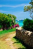 View down grassy lane to sea, Porto Cervo, Sardinia, Italy