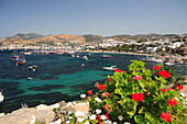 View over Outer Harbour with flowers in foreground, Bodrum, Aegean, Turkey