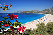 Beach scene, view through flowering branches, Oludeniz, Mediterranean, Turkey