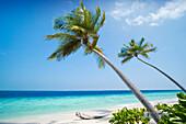 Beach scene, General, The Maldives