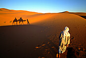 Camel being led in the desert, Merzouga, Morocco