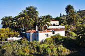 Hacienda with palm trees, West Coast, La Palma, Canary Islands