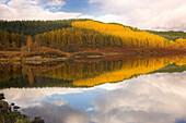 Loch Garry in autumn, Glen Garry, Highland, UK, Scotland