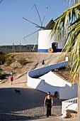 Landschaft mit Windmuehle und weiss bemaltes Haus, Westalgarve, Odeceixe, Algarve, Portugal
