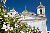 Santo Antonio Church with almond blossoms, Lagos, Algarve, Portugal