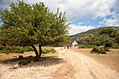 Country road and little church under clouded sky, Altiplano Su Golgo, Sardinia, Italy, Europe