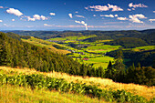View from the Herzogenhorn at the Bernauer Hochtal (Valley of Bernau) and Swiss Alps, Afternoon, Summer, Black Forest, Baden-Württemberg, Germany, Europe