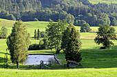 Natural swimming pool, Grainbach, Samerberg, Chiemgau, Bavaria, Germany