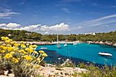 Sailing yachts in the bay Cala Mondragó in the sunlight, beach of Caló d'en Garrot, natural park of Mondragó, Mallorca, Balearic Islands, Mediterranean Sea, Spain, Europe