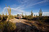 Eine Familie steht vor einem Schulbus inmitten Kakteen in der Wüste, Catavina, Baja California Sur, Mexiko, Amerika