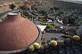 View from the restaurant, towards the cacti and the botanical garden, Jardin de Cactus, artist and architect Cesar Manrique, Guatiza, UNESCO Biosphere Reserve, Lanzarote, Canary Islands, Spain, Europe