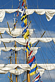 Detail of masts and sails of the ARM Cuauhtemoc sail training vessel of the Mexican Navy,  Rouen. Normandy,  France (L´Armada 2008 sailing event)