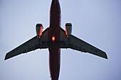 Plane landing at night,  Gold Coast,  Queensland,  Australia