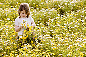 Aussen, Blume, Blumen, Blumenstrauss, Draussen, Eine Person, Eins, Farbe, Freizeit, Gelb, Gras, Halbfigur, Kind, Kinder, Kindheit, Kleinkind, Kleinkinder, Land, Mädchen, Mensch, Menschen, Sonnig, Stehen, Stehend, Tageszeit, Weiblich, Wiese, Wiesen, Wildbl