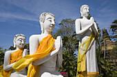 Buddha statues wearing monks' robes at Wat Yai Chai Mongkhon, Ayutthaya, Province Ayutthaya, Thailand, Asia