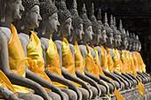 Buddha statues wearing monks' robes in a row, Wat Yai Chai Mongkhon, Ayutthaya, Province Ayutthaya, Thailand, Asia