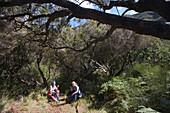 Two Women enjoying a rest on the Levada Walk to 25 Fontes waterfalls, Near Rabacaul, Madeira, Portugal