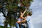 Couple under an apple tree, woman reaching for an apple, Styria, Austria